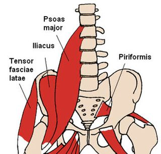 PSOAS_MUSCLE